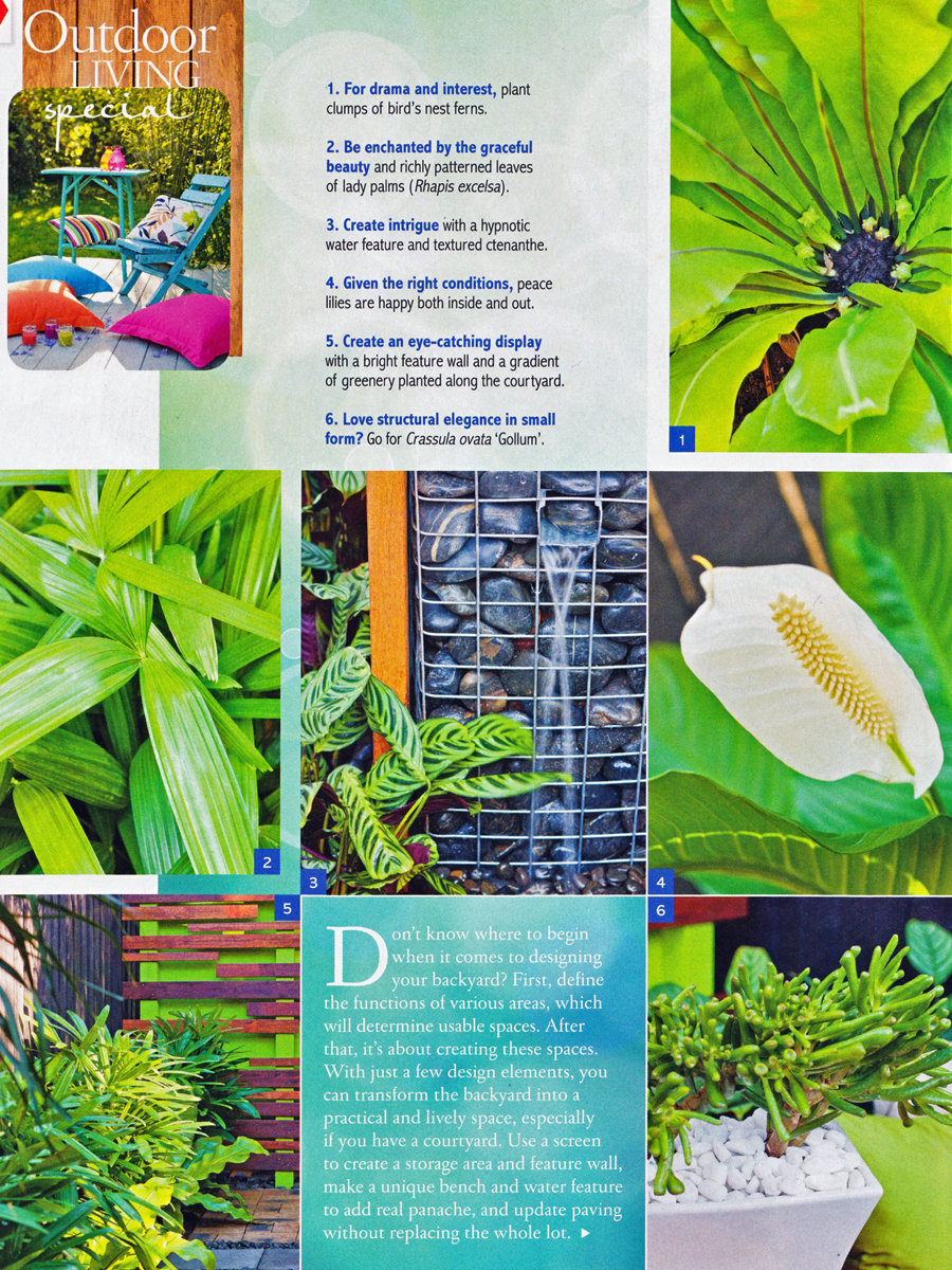 Living outdoors pod gardens Better homes and gardens website australia